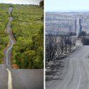 Austrálie před a po. Vlna požárů zdevastovala značnou část ostrovního kontinentu - australia-bushfires-before-after-photos-23-5e15e3417506e__700