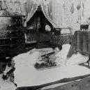 Opium omámilo v 19. století západní svět - opium-den-floor-pallet-chinatown-san-francisco-1925