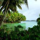 Palmyra – ukrývá krásný atol pirátský poklad? - Strawn_Island_at_Palmyra_Atoll_NWR_(5123999194)