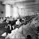 Zbytečná smrt téměř 150 dívek v plamenech továrny - 00-tout-triangle-shirtwaste-factory-fire