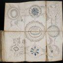 Kdo a proč sepsal tzv. Voynichův rukopis? Středověkou záhadu zatím nedokáže rozlousknout ani umělá inteligence - 800px-Voynich_Manuscript_(158)