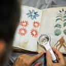 Kdo a proč sepsal tzv. Voynichův rukopis? Středověkou záhadu zatím nedokáže rozlousknout ani umělá inteligence - GettyImages-592626362-1024×683