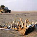 Africké pobřeží s tisíci vraky a nespočtem koster - Skeleton_Coast_01