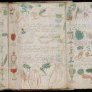 Kdo a proč sepsal tzv. Voynichův rukopis? Středověkou záhadu zatím nedokáže rozlousknout ani umělá inteligence - Voynich-Code