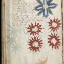 Kdo a proč sepsal tzv. Voynichův rukopis? Středověkou záhadu zatím nedokáže rozlousknout ani umělá inteligence - Voynich_Manuscript_(32)