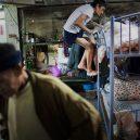 Klec jako domov – nedůstojné klaustrofobické bydlení nejchudších bohatého Hongkongu - bunk-climbing