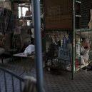 Klec jako domov – nedůstojné klaustrofobické bydlení nejchudších bohatého Hongkongu - wire-dwelling
