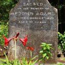 Pitcairnův ostrov – tichomořský ráj s kontroverzní minulostí - 7484341