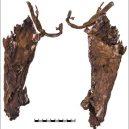 """Patřily 2600 let staré ostatky dvanáctileté """"Amazonce""""? - inside_quiver"""