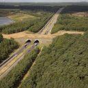 Prohlédněte si ty nejzajímavější ekodukty a mosty pro zvířata z celého světa - Wildlife-Crossing-Belgium