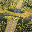 Prohlédněte si ty nejzajímavější ekodukty a mosty pro zvířata z celého světa - Wildlife-Crossing-Netherlands