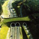 Prohlédněte si ty nejzajímavější ekodukty a mosty pro zvířata z celého světa - Wildlife-Crossing-netherlands-3