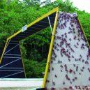 Prohlédněte si ty nejzajímavější ekodukty a mosty pro zvířata z celého světa - Wildlife-Crossing-Red-Crab-Crossing-Christmas-Island