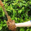 300 let starý meč anglického vojáka objevil školák za svým barákem - ancient-basket-handle-sword