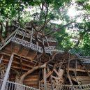 Obrovský stromový dům vyrůstal z mohutného dubu - 24xp-treehouse-superJumbo