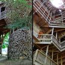 Obrovský stromový dům vyrůstal z mohutného dubu - a
