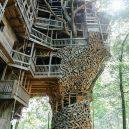 Obrovský stromový dům vyrůstal z mohutného dubu - treehouse1+(1+of+1)