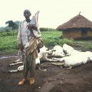 Tichá a nečekaná smrt si roku 1986 přišla pro několik tisíc obětí - OyqEHpU