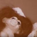 """Bizarní protidrogový snímek """"Case Study: LSD"""" z roku 1969 - content_Screen_Shot_2017-07-12_at_11.36.06_PM"""
