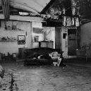 Neznámý Andy Warhol kamerou mladého britského fotografa - 1297014