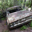 Pohřebiště veteránu v kouzelném švédském rašeliništi - carcemetry4
