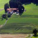 Německý les se svastikou není jediným svého druhu - forest-swastikas-5