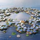 Oceanix City – plující město budoucnosti - oceanix-city-floating-big-un-habitat-mit_dezeen_hero-1704×959
