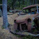 Pohřebiště veteránu v kouzelném švédském rašeliništi - Ryds-bilskrot-matsjonssonfoto107