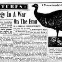 """Bizarní australská """"válka s emuy"""" z roku 1932 - emu_G2"""