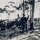 """Bizarní australská """"válka s emuy"""" z roku 1932 - hl,"""