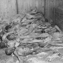 Ohrdruf – první z Američany osvobozených nacistických táborů - Ohrdruf_Corpses