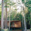 Na věčný odpočinek do sekvojového lesa - better-place-forests-burial-grounds-claifornia-openscope-studio-fletcher-studio-_dezeen_2364_col_11-1536×1024