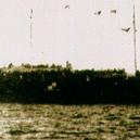 Tragédie uprchlické lodi Struma torpédované Sověty - cy