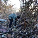 Nevábné místo plné odpadků přeměnil senior v zelený les - Mardin tree grower 3